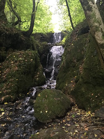 Canonteign Falls and Teignmouth