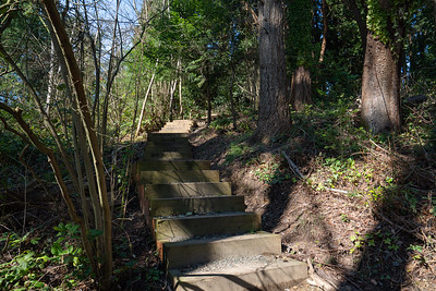 2020-03-19-Burien-Parks