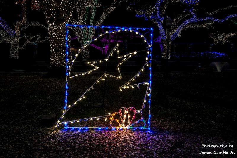 Houston-Zoo-Lights-2914.jpg