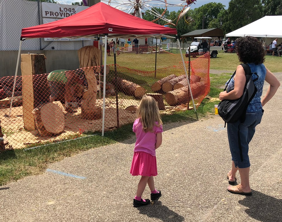 . Tawana Roberts � The News-Herald <br> Fair-goers watch Matthew Hannah use a chainsaw to create a wood sculpture at the 2018 Lake County Fair on July 26.