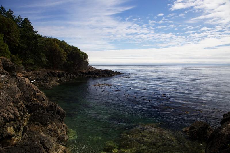 Rocky coast at Lime Kiln State Park. San Juan Island, Washington.