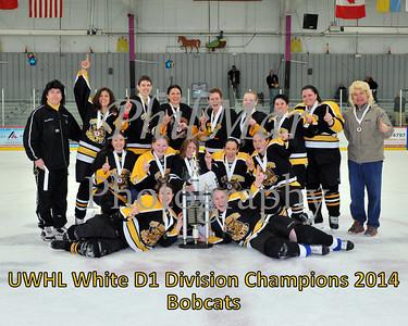 White D1 Championship - Bobcats vs Flames