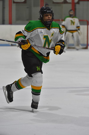 Game 4 - (QF)  Nickel City Jr Sons vs Mississauga North Stars