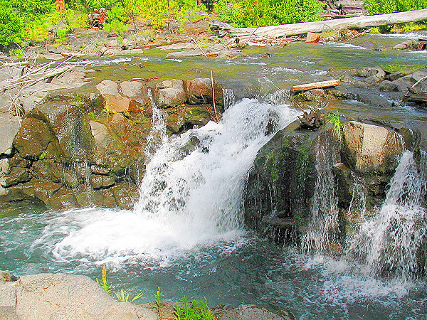 Rogue River (33713156).jpg