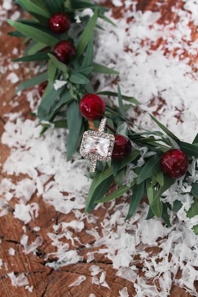 Christmas-Inspired-Wedding-Photos-Christmas-Wreath-Snow-Engagement-RIng-Photography-By-Laina-Dade-City-Tampa-Area-Wedding-Photographer-1.jpg