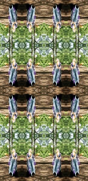 23183_mirror2.jpg