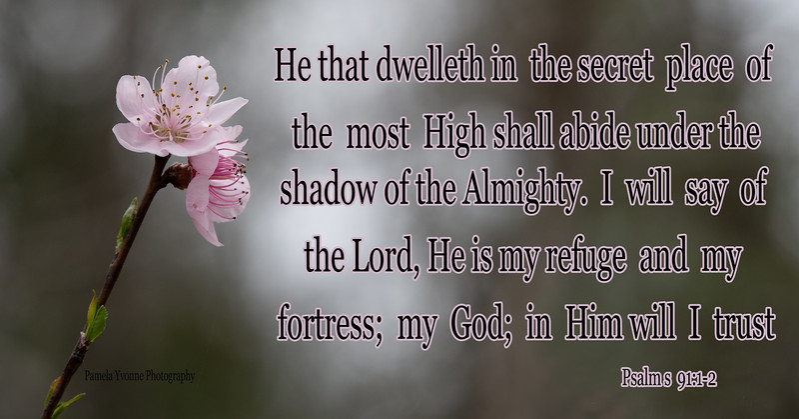 Psalms 91 1-2.jpg