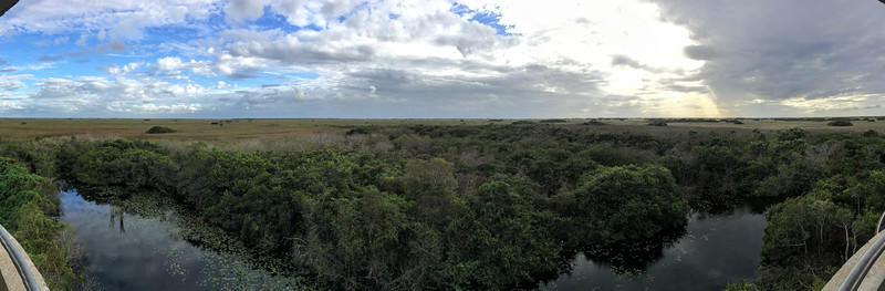 Biking the scenic loop at Shark Valley in the Florida Everglades National Park.