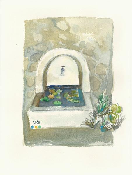No.224 Un étang dans une fontaine.jpg