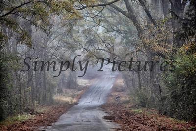 fog 0384 copy