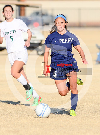 Girls Soccer 2016 Perry vs Skyline