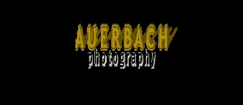 AuerbachPhotoLogoShadows874x378noTag-Trans.png