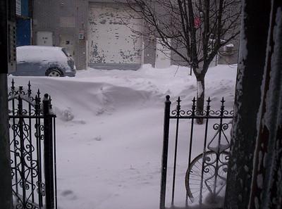 Whitney's New York Snow Pics