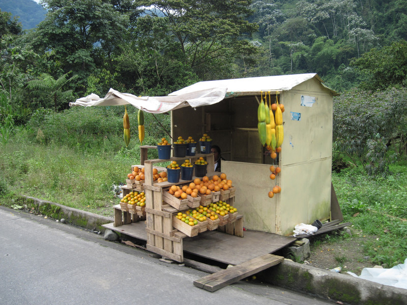 Roadside Fruit Stand