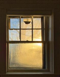 11/1-11/5 Alida/Annie's Bat Mitzvah, Projects around the house, Still no baby