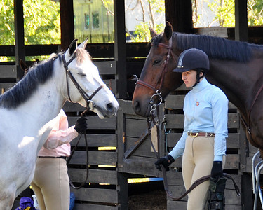 South Creek Pony Club Ratings
