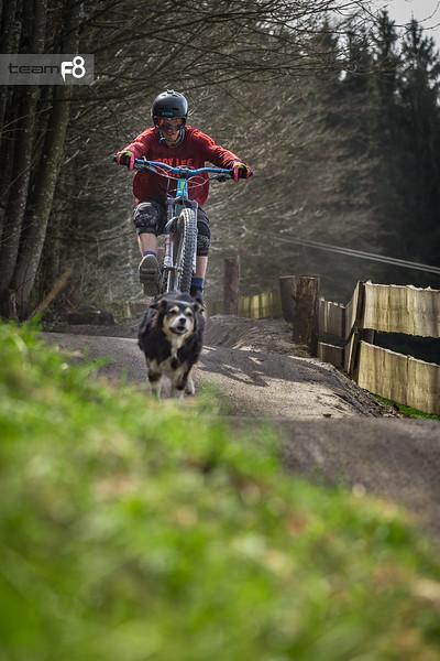123_bikepark_samerberg_2017_photo_team_f8.jpg