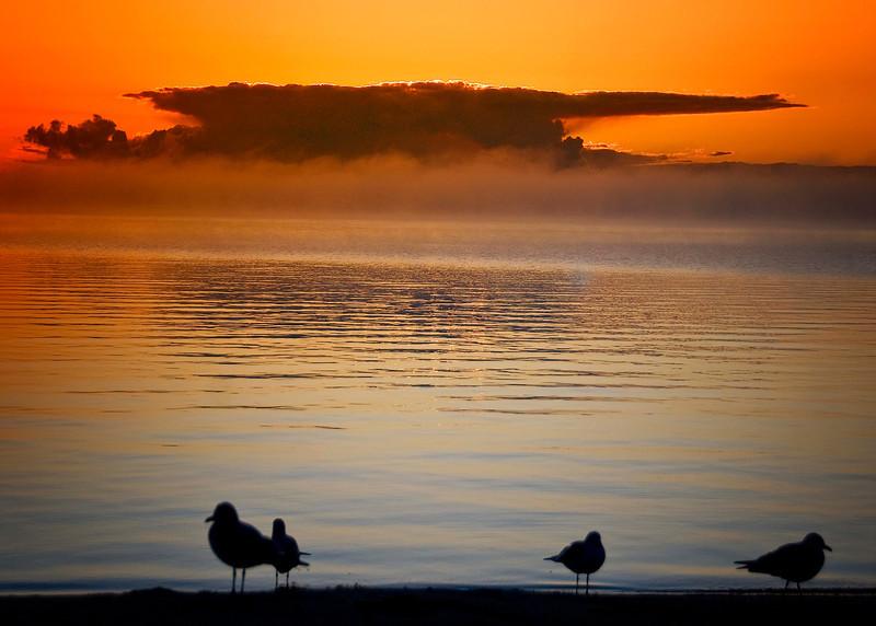 Macinack Island.  - Copy.jpg