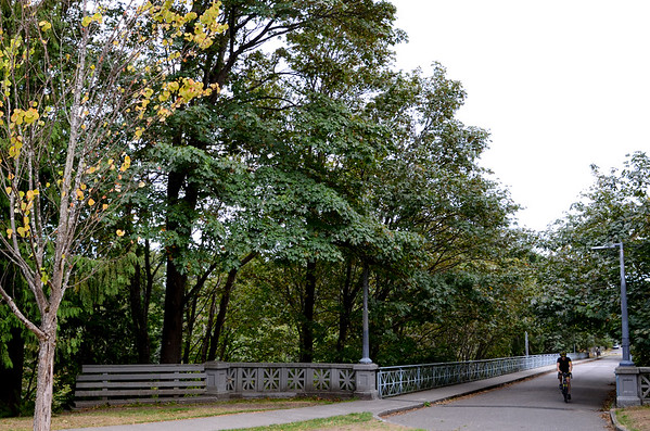 20th Avenue NE Bridge at Ravenna Park