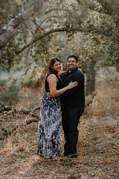 Swapna and Atul Engagement-37.jpg
