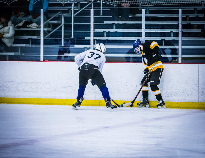 Bruins2-177.jpg