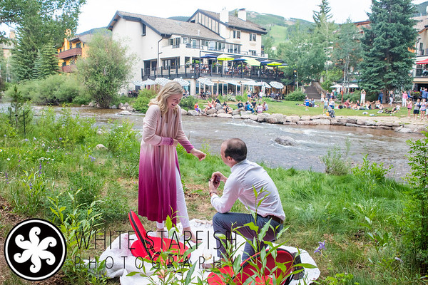 Vail Proposal - Gore Creek - Dimon