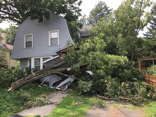 Storm Damage 0806 IMG_0403