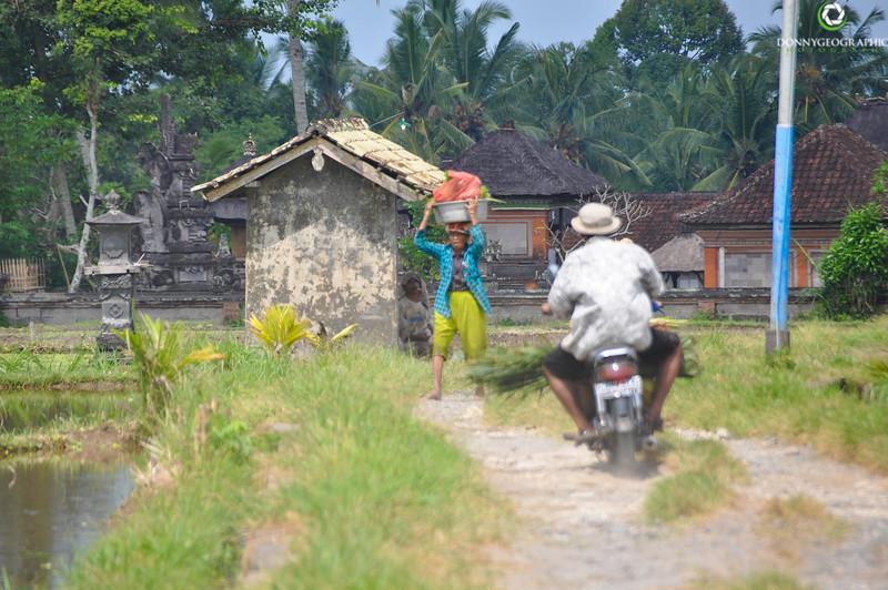 Bali-612.jpg