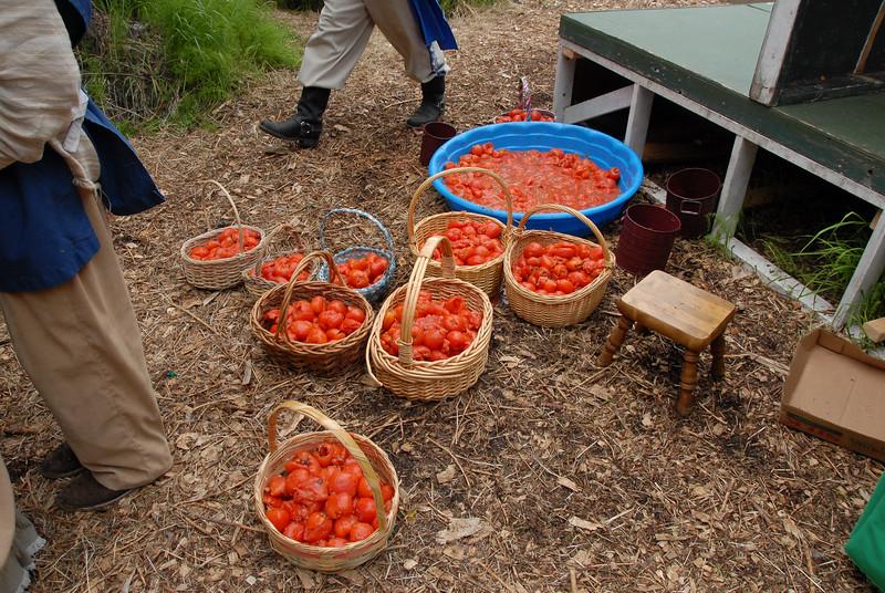RF-TomatoPreShow-0021.jpg