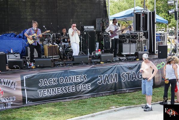 The Rockin' Jake Band 2016
