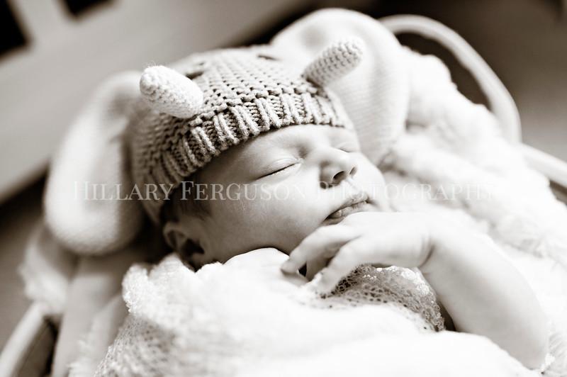 Hillary_Ferguson_Photography_Carlynn_Newborn021.jpg