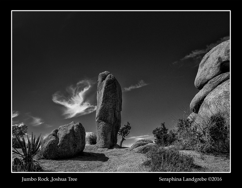 _DSC5883Goddess rock B&W.jpg