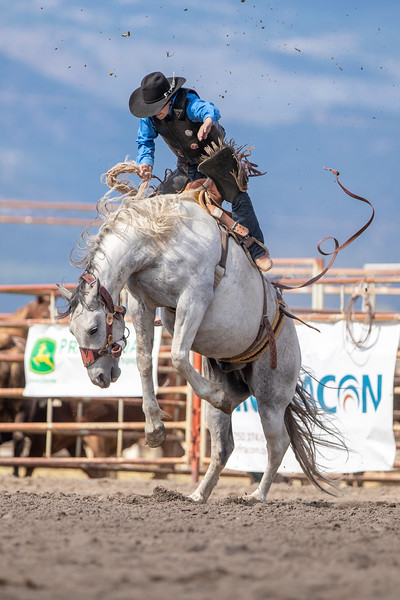 2019 Rodeo 2 (1078 of 1380).jpg