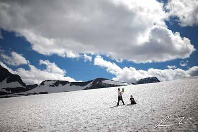 Glacier for Tribune