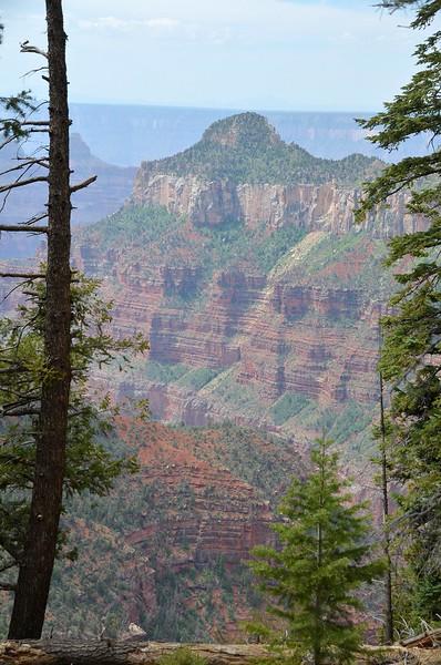 grand_canyon_2014_004.jpg