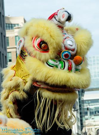 Chinese New Year Parade - Horse