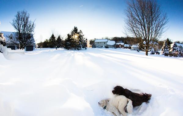 Snowstorm Jonas January 23-24 2016