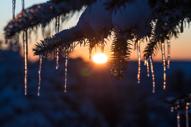 2019-12-06_SN_KS_December Snow-05302.jpg