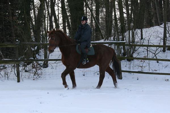 Sunny und Schatz im Schnee 07.03.2010