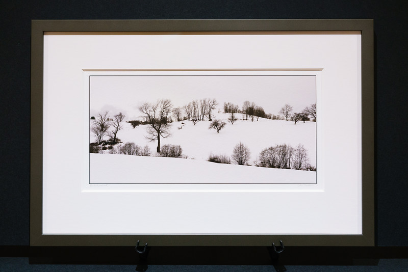 Framed print with thick mat
