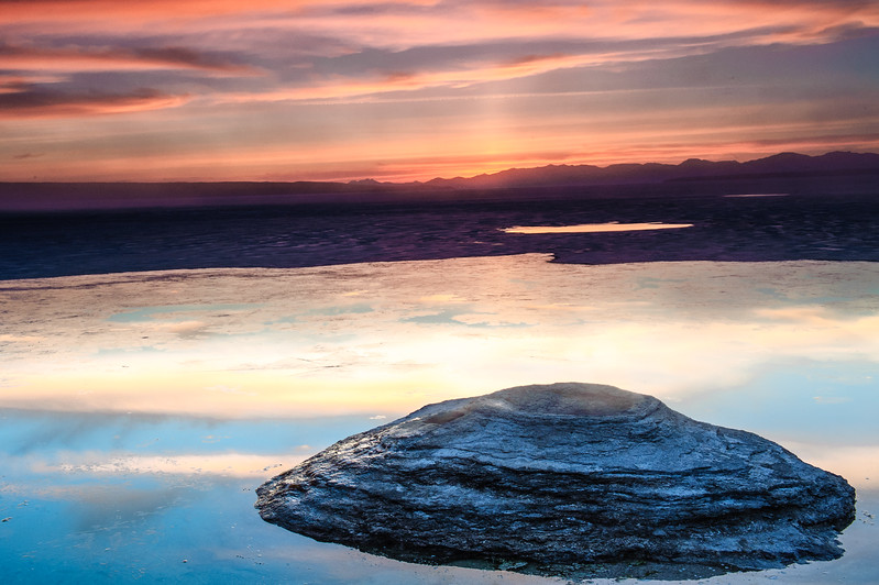 20130511-12 Yellowstone 199.jpg