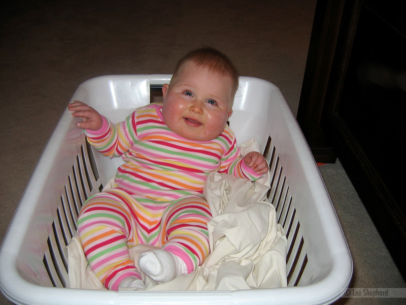 Nooo...the baby goes out with the bathwater, not the laundry.  Sheesh!