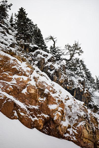 2020-0106 Bridger Bowl Ski Trip - GMD1013.jpg