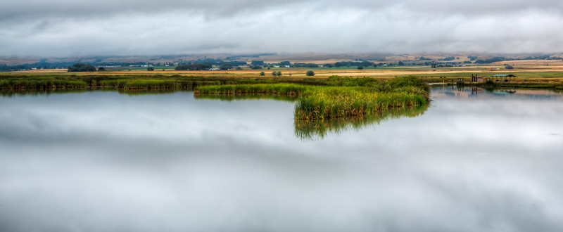 Marsh in the Clouds