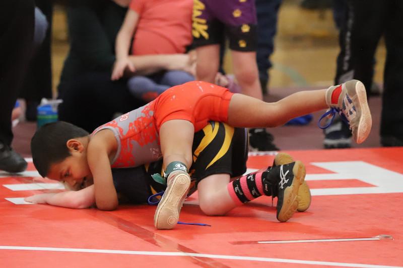 Little Guy Wrestling_4414.jpg
