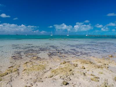 0209 Eleuthera (Bahamas)