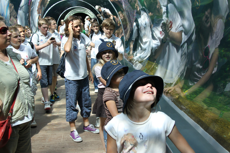 colchester zoo (43).jpg