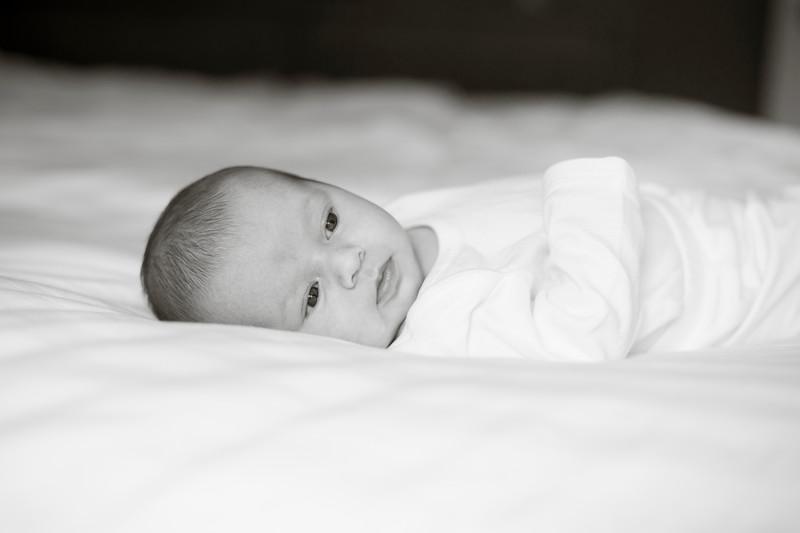 Grayson Newborn-36.jpg