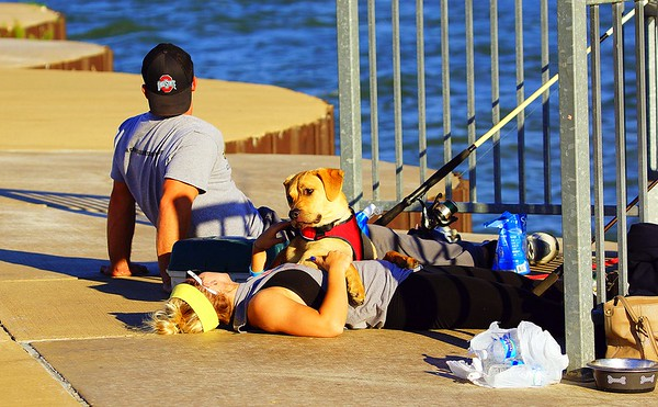 Couple with Dog at Pier 7-1-2016