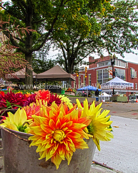 Easton Farmers Market, Easton, PA  9/29/2012